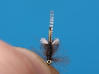 RS Hatching Buzzer