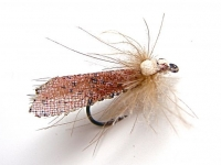 Web Wing Caddis