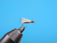 Cdc Cone Caddis
