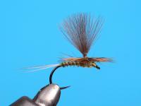 Olive Parachute Biot Dun (Rhodani)
