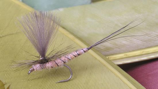 En vulgataimitasjon med forlenget kropp. Imitasjonen bør være mellom 19 og 22 mm lang uten halefibrene.